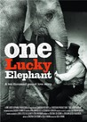 One Lucky Elephant Image