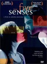 The Five Senses Image
