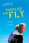 Turtles Can Fly Image