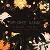 Noise Floor (Rarities 1998-2005) Image