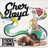 Sticks + Stones Image