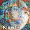 The Mosaic Project Image