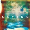 Skying Image