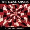 Clear Lake Forest [EP] Image