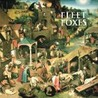 Fleet Foxes Image