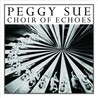 Choir of Echoes Image