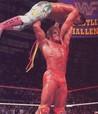 WWF Wrestling Challenge Image