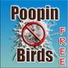Poopin Birds Image