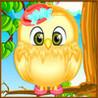 Bird Care And Salon Image