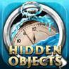 Hidden Objects - Frozen in Time Image