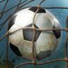 Football Kicks Image