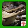 Crocodile Hunter 2014 Image