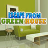 Escape From Green House Image