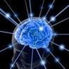Brain Reader! Image