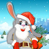 A Fast Rabbit : Hunter Of Carrots For Christmas Image