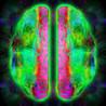Brain Rave Image