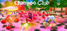 Champoo Club