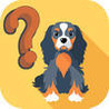 Dog Breeds Trivia Quiz for Dogs Lovers Image