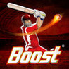 Boost Power Cricket Image