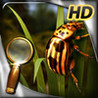 Treasure Island - The Golden Bug - Extended Edition - HD Image