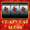 Crazy Cat Slots - Win Big Jackpots with Wild Cats Slots Game Image