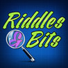 Riddles & Bits ~ guess the little puzzle words 24 x 7 Image