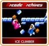 Arcade Archives: Vs. Ice Climber Image