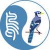 Bird Paster Image