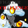 Fighter Challenge Image