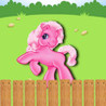 Pony Race HD Image