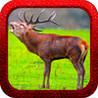 Red Deer Hunting Shooter Image