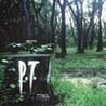 P.T. Image