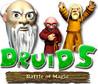 Druids: Battle of Magic Image