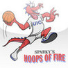 Hoops Of Fire Image
