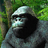 Monkey Arm Wrestling Image