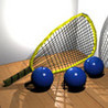 Racquetball Image