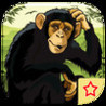 Flying Ninja Apes Attack - The Planet of War PREMIUM by The Other Games Image