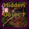 Hidden Object Hot Summer Image