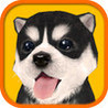 Dog Simulator HD Image