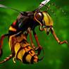 Bugs Mayhem (2013) Image