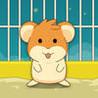 Hamster Jump Hero - Crazy Ball Bounce Wheel Image