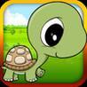 Baby Turtle Flying - Tortoise Fly Racing Image