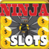 Extreme Ninja Slots Image