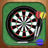 Darts Master 2014 - Pro King Player Sport Night Game 3D Image