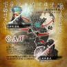 C.A.T Image