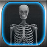 X-Ray Maker - Kids Game and More Image
