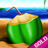 Coconut Beach Summer Vacation : The Shell Game - Gold Edition Image