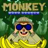 Monkey Wordsearch Image