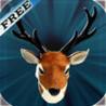 Late Night Deer Strike : Best Deer Hunting Image