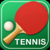 Table Tennis 3D - Virtual World Cup (2013) Image